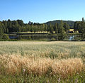 Jyväskylä Haapaniemi field.jpg