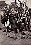 Karl Schwabe, 3 x Afrika (129).jpg