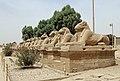 Karnak Western Sphinxes Alley R04.jpg