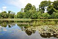 Kilmory Loch - geograph.org.uk - 501753.jpg