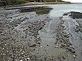 Kimmeridge Bay - geograph.org.uk - 428281.jpg