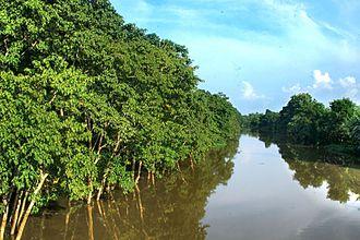 Nagaon - The Kolong river