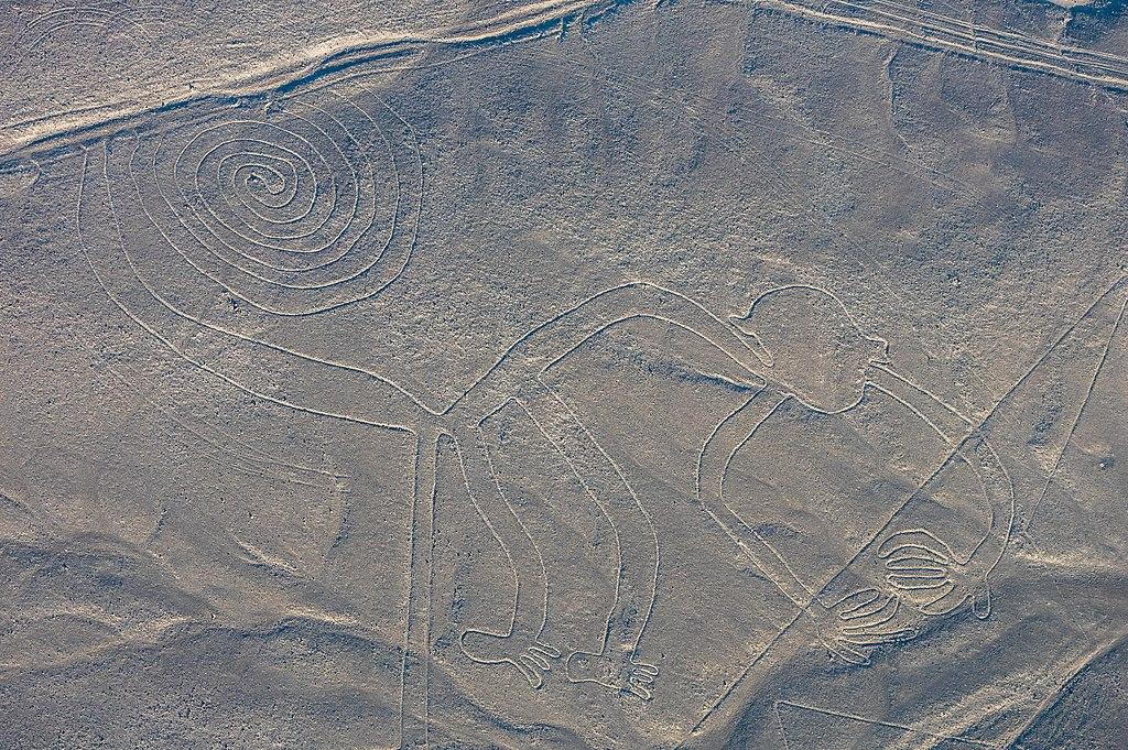 Líneas de Nazca, Nazca, Perú, 2015-07-29, DD 49.JPG