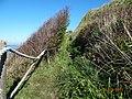 LE Croquet - panoramio.jpg