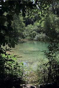 La Rivière de Dardennes.jpg