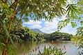Lago ESPOL.jpg