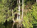 Lake231423RT.JPG