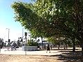 Lake Balboa, Los Angeles, CA, USA - panoramio (39).jpg