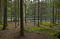 Lake Hältingträsk in Sipoonkorpi, 2009.jpg