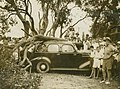 Large group of people surround a motor vehicle after a tree has fallen on it (3208090283).jpg