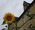 Le jardin de l'abbaye d'Aubazine, Corrèze, France 04.jpg