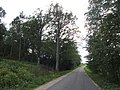 Lentvario sen., Lithuania - panoramio (3).jpg