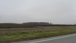 Fields in eastern Liberty Township