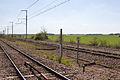 Ligne de Bourron-Marlotte à Malesherbes - 2013-04-21 - IMG 9568.jpg