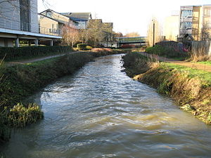 Oxford Science Park - Littlemore Brook, a tributary of the River Thames that runs through the Oxford Science Park from the Blackbird Leys estate in Oxford.