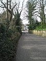 Looking down Blendworth Lane towards Horndean - geograph.org.uk - 1197991.jpg