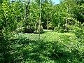 Lovech, Bulgaria - panoramio (65).jpg