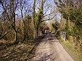 Lower Bullington - Narrow Road - geograph.org.uk - 687844.jpg