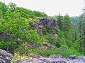 Lower White River Wilderness (8615218026).jpg