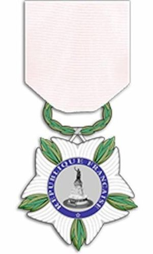 National Medal of Recognition for victims of terrorism - Image: Médaille victimes terrorisme revers