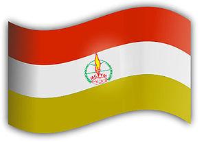 Malankara Catholic Youth Movement - Image: MCYM Flag