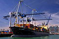 MSC Hobart (ship, 1994) 001.jpg