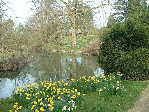Magdalen Fellows' Garden