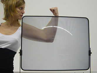 Magnifying glass - A plastic Fresnel lens sold as a TV-screen magnifier
