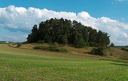 Naturdenkmal Ratberg in Magstadt (Aufgenommen aus Richtung Warmbronn)
