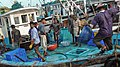 Mangalore fishing docks.jpg