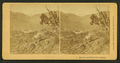 Manitou and Pikes Peak, Colorado, by Kilburn Brothers 2.png