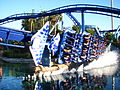 Manta at SeaWorld Orlando 77.jpg