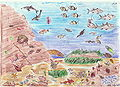 Mar Mediterráneo fauna.jpg