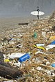 Marine Litter Crisis.jpg