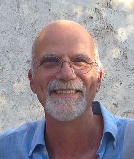 Maurizio Prato (scientist)