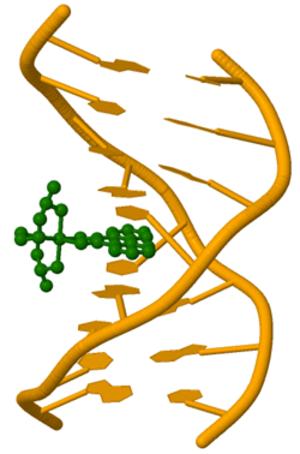 DNA-binding metallo-intercalators - Image: Metallo intercalator DNA binding