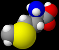 Methionine model.png