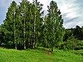 Miass, Chelyabinsk Oblast, Russia - panoramio (15).jpg