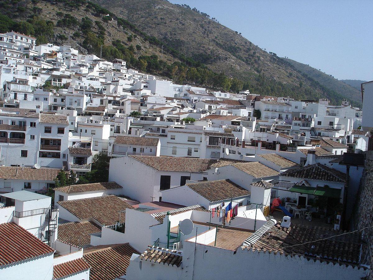 profesional puesto lechón en Málaga
