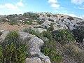 Mistra, St Paul's Bay, Malta - panoramio (19).jpg