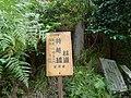 Mochikoshi forest road plate.jpg