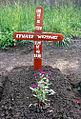Mogiła Polaka, Edwarda Wójtowicza, na polskim cmentarzu w Tengeru.jpg