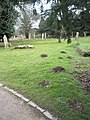 Molehills in the churchyard at St Mary and St Blaise, Boxgrove - geograph.org.uk - 1726530.jpg