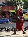 Monk with Pigeons - Yangon - Myanmar (Burma) (11750309245).jpg