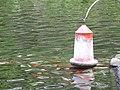 Monte Palace Tropical Garden DSCF0145 (4642500605).jpg