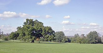 Raynes Park - Across Cannon Hill Common to Wimbledon.