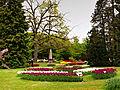 Morges-Fete Tulipe 11.jpg
