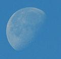 Morning Moon (2147691753).jpg