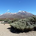 Mount Teide, Teide National Park, Canary Islands, Spain. Национальный парк Тейде - panoramio.jpg
