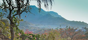 Mount abu.jpg